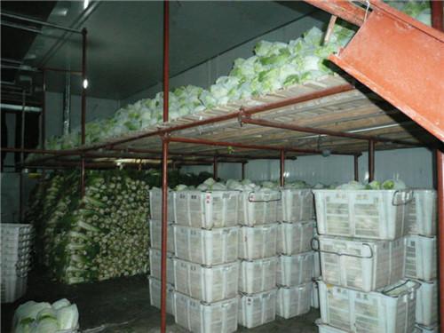 白菜存储冷库